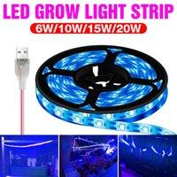 Grow Lights USB Plant 0.5m 1m 2m 3m Waterproof Full Spectrum LED Strip Flower Phyto Lamp Greenhouse Growth Box Hydroponic