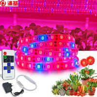 5M LED-Anlage wachsen Licht volles Spektrum 5050 Wachsen-Lampen wasserdichte LED-Lampe Phyto-Lampe für Treibhaus-Blumensamen-Anlage
