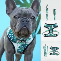 Ins Hot Sell Small And Medium-sized Dog Pet Breathable Mesh Harness and Leash Set Harnesses Vest Puppy Chest Strap Pug BullDog H0914