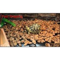 Усовершенствованный тепловый коврик Vivarium Reptile Snake Lizard Gecko Heat Pad Reptile Jllyka MX_HOME