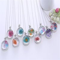 Pendant Necklace Korean Charm Round Pendant Necklace Gold Silver Color Bead Chain Colorful Specimen Dried Flower Necklace Jewelry For Women Girls