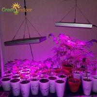 Phytolamp para plantas Spectrum IR UV LED Crescer Luz Phyto Lâmpada Ervas Crescendo Floração Indoor Crescimento Tenda Kit Hidropônico