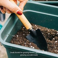 Factory 3pcs set Shovel Rake Set Wooden Handle Metal Head Tools for Flowers Potted Plants Mini Garden Tool Seed Disseminator DWD10529
