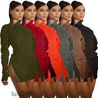 2021 Casual Katı Renk Elbiseler Streç Ince Elbise Sonbahar Kış Balıkçı Yaka Fermuar Kadın Moda Katı Siyah Uzun Kollu Bodycon Lulu365
