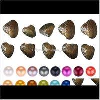 Gevşek Boncuk Takı Damla Teslimat 2021 Fantezi Hediye Akoya Aşk Tatlısu Shell 6-7mm İnci Oyster Vakum Ambalaj Ile 31 Renkler Fokkz