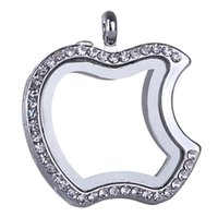 التفاح العائمة المنجد المعلقات الذاكرة المعيشة صور الزجاج كريستال مربع نموذج العائمة سحر المناجد جزء من قلادة سلسلة المفاتيح