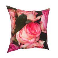 Cojín / almohada decorativa Rosas suaves Naturaleza Flor Funda de almohada Impreso Tela Cojín de cojín Caja de lanzamiento decorativo Drop 40x40cm