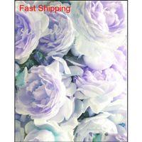 10 pcs / sac couleur mélangé pivoine graines chinois arbre rose pivoine graines magnifique décoration fleur de bonsaï jllysy jardin_light