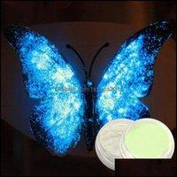 Salón de uñas Health Beautynail Glitter 1G Fluorescencia Neón de neón Pigmento Polvo Invierno Luminoso Decoración Decoración Dust Brillo en Drow Dro