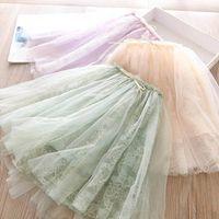 Girls Gonne Pizzo Ricamato Tutu Gonne Gonne Bambini Primavera Summer Ballet Dress Princess Bambino Vestiti Bambini Abbigliamento 2-6Y B3971
