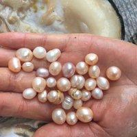 Luźne szlachetne ostrygi perły 10 sztuk Multi Color Freshwater Oyster z perłą w pakiecie próżniowym, Big Wish Shell Hurtownie niska cena