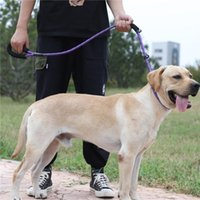 Büyük Köpek Yansıtıcı Halat Kurşun Tasma 5 Renk Naylon Temel Tasmalar Orta Köpek Yürüyüş Büyük Köpek Yaka Labrador Rottweiler 1324 T2