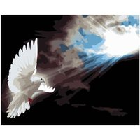 Paintings Sunlight White Dove Animal DIY Painting By Numbers Wall Art Picture Acrylic For Home Decoration Drop 60x75cm