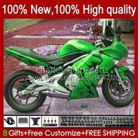 Verkleidungsset für Kawasaki Ninja 650r ER 6F ER 6 F Green Flames NEUER ER6F-650R 29HC.94 ER6 F 650 R ER6F 06 07 08 ER-6F 2006 2007 2008 Ganzkörper