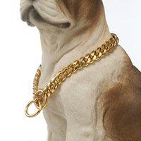 10mm forte couleur doré en acier inoxydable chiens en acier en acier inoxydable Colliers de chaîne de starter pour les gros chiens Pitbull Bulldog Slip