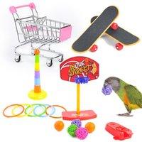 Planche à roulettes de basketball 1set of Training Pet Bird Jouet Équipement interactif Set Funny Activité Perroquet