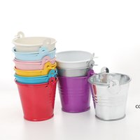Wedding Party Rośliny Doniczkowe Mini Małe Assorted Colored Pails Wiadra Can Wybierz kolor DHB8911