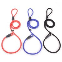 Dog Collars & Leashes Nylon Strong Soft For Small Large Cat Outdoor Sports Walking Training Collar P-Line Pets Supplier