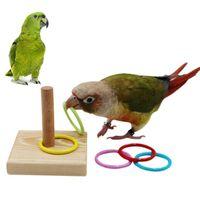 기타 조류 용품 애완 동물 앵무새 나무 플랫폼 플라스틱 반지 지능 훈련 씹는 퍼즐 장난감 제품 개발