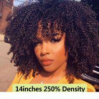 250 Densidad Afro Kinky Frente de encaje rizado Pelucas de cabello humano con flequillo Peluca frontal de encaje de cordón corta para mujer Lleno 4b 4c negro