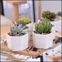 Supplies Patio, Lawn Garden & Gardenceramic Bonsai Pots Wholesale Mini White Porcelain Flowerpots Suppliers For Seeding Suent Indoor Home Nu