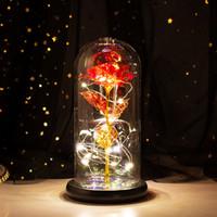 Feuille de luminium artificielle éternelle éternelle dans la couverture en verre LED lumière de nuit pour la maison de décoration de la maison Saint Valentin Jour Nouvel An Cadeau
