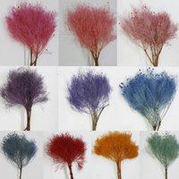 Decoratieve bloemen kransen 1 boeket asperges eeuwige bloem droom gras planten DIY Craft geschenkdoos decor materiaal gedroogd huis floral arran