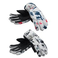 Ski Gloves Men's And Women's Outdoor Sports Riding Windproof Warm Winter Thickened Color Matching Skiing Couple