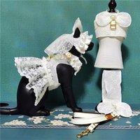 Prinzessin Stil Spitze Haustier Rock Hund Katze Hochzeitskleid Designer Brief Traktion Seil Set Hunde Weste Röcke Teddy Bulldog Schnauzer