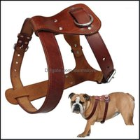 Collares correa suministros para mascotas Home Gardengenuine perro arnés marrón cuero real perros caminar entrenamiento chaleco ajustable correas medianas grandes p