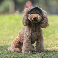 Dog Apparel Style Sun Hat For Dogs Cute Pet Casual Cotton Baseball Cap Chihuahua Yorkshire Products Size S-XL Zh1