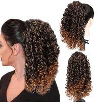 Pelucas sintéticas HF SoltyTring Ponytail Afro Kinky Rizado para mujeres Negras Postales Clip en Jerry Rizls Puff