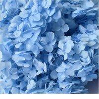 5G / Partij Hortensia Real Gedroogde Bloem Droogplanten voor Aromatherapie Kandelepoxy Hanger Ketting Sieraden Maken Craft DIY ACC Jllinl