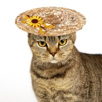 Cat Costumes Summer Pet Dog Cute Small Daisy Straw Hat Decors Sombrero Sun For Puppies Kittens Fashion Accessories