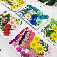 Decorative Flowers & Wreaths Small Real Dried Flower Natural Dry Plants For Candle Epoxy Resin Pendant Necklace Jewelry Making Craft DIY Acc