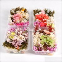 Decorative Wreaths Festive Party Supplies Home & Gardendry Mix 1 Box Real Dried Flower Artificial Flowers Wedding Decor Resin Pendant Neckla