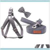 Collars Leashes Home & Gardenunique Style Paws Gray Wave Harness With Bowtie Dog Leash Adjustable Buckle Pet Supplies Drop Delivery 2021 Sey