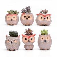 6 pièces Succulent cactus bonsai titulaire de bonsai décoration mini hibou flowerpot plante plante pot de fleurs maison décoration de bureau