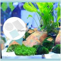 Aquariums Pet Supplies & Garden3Pcs Plant Moss Carpet Fixed Net Mesh Water Grass For Decor Aquarium Home Fish Tank Decorations Drop Delivery
