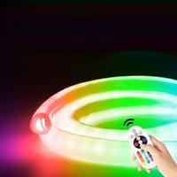 RGB LED Striscia 220 V Telecomando Colore RGB LED Nastro Arredamento per esterni Decor Strip Lights Lampada impermeabile Luci al neon a 360 gradi di luce