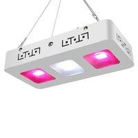 2020 NOUVEAU 300W FULL SPECTRUM LED Grow COB Light COB CLIP Éclairage de plante pour plan intérieur