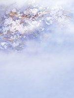 Dream Цветочные лепестки Детские Душ Виниловая фотография Фон Фоны Весна Фиолетовый фото Кабина Фоны Для Детских День Рождения Студийный реквизит