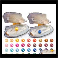 Wholesale 2018 Akoya Pearl Oyster 6-7Mm Round 25 Colors Freshwater Natural Cultured In Fresh Oyster Pearl Mussel Supply Rlsvz Trozg