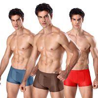 Sous-robe 2021 Solid Sexy Slips Slips Hommes Panties Hommes Boxer Short Sans critère pour homme SlipSlip Mens Grand Plus Taille Éthika Boxers