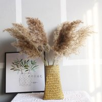 Decorative Flowers & Wreaths Dried Light Color Wedding Bunch Natural Pampas Grass Flower Beautiful Reed Christmas Home Decoration Phragmites