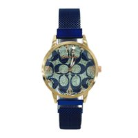 Branded watch Designer net red lazy iron stone women's printed magnetic mesh belt quartz Girls' Watch