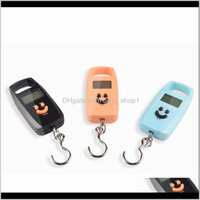 Craft Tools Mini Digital Portable Electronic Steelyard Weight Balance Suitcase Travel Bag Hanging Hook Pocket Scale Ewf3082 0Jsj3 Xynp3
