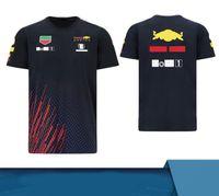 F1 Takımı 2021 Sezon Takım Üniforma Kısa Kollu Polyester Hızlı Kurutma Özelleştirilebilir Motosiklet Yarışı Takım Tişört Yokuş Aşağı Kısa Kollu Sum