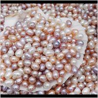 Consegna a goccia di perle 2021 di alta qualità 6-7mm perline di semi ovale 3 colori bianco rosa viola viola perle d'acqua dolce allentato per gioielli per la produzione di forniture POZ