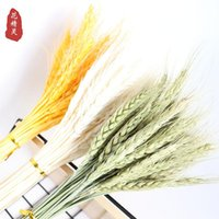 Decorative Flowers & Wreaths 50Pcs Dried Natural Real Wheat Ear Flower For Wedding Party Decoration DIY Craft Scrapbook Home Decor Bouquet